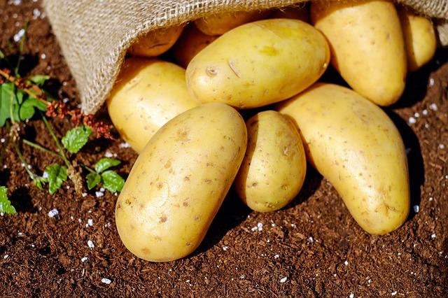 L'aventure des pommes de terre