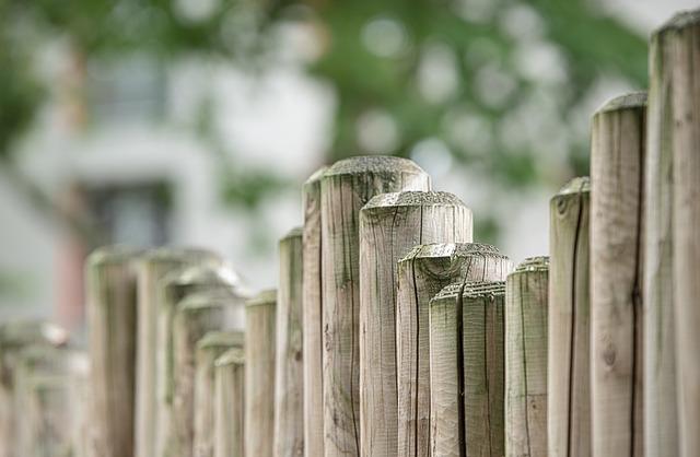 Peupliers, clôture et plantations – Les Jardins de Laurent