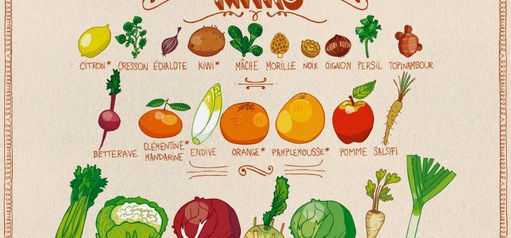 Le calendrier des fruits et légumes de saison, en images !