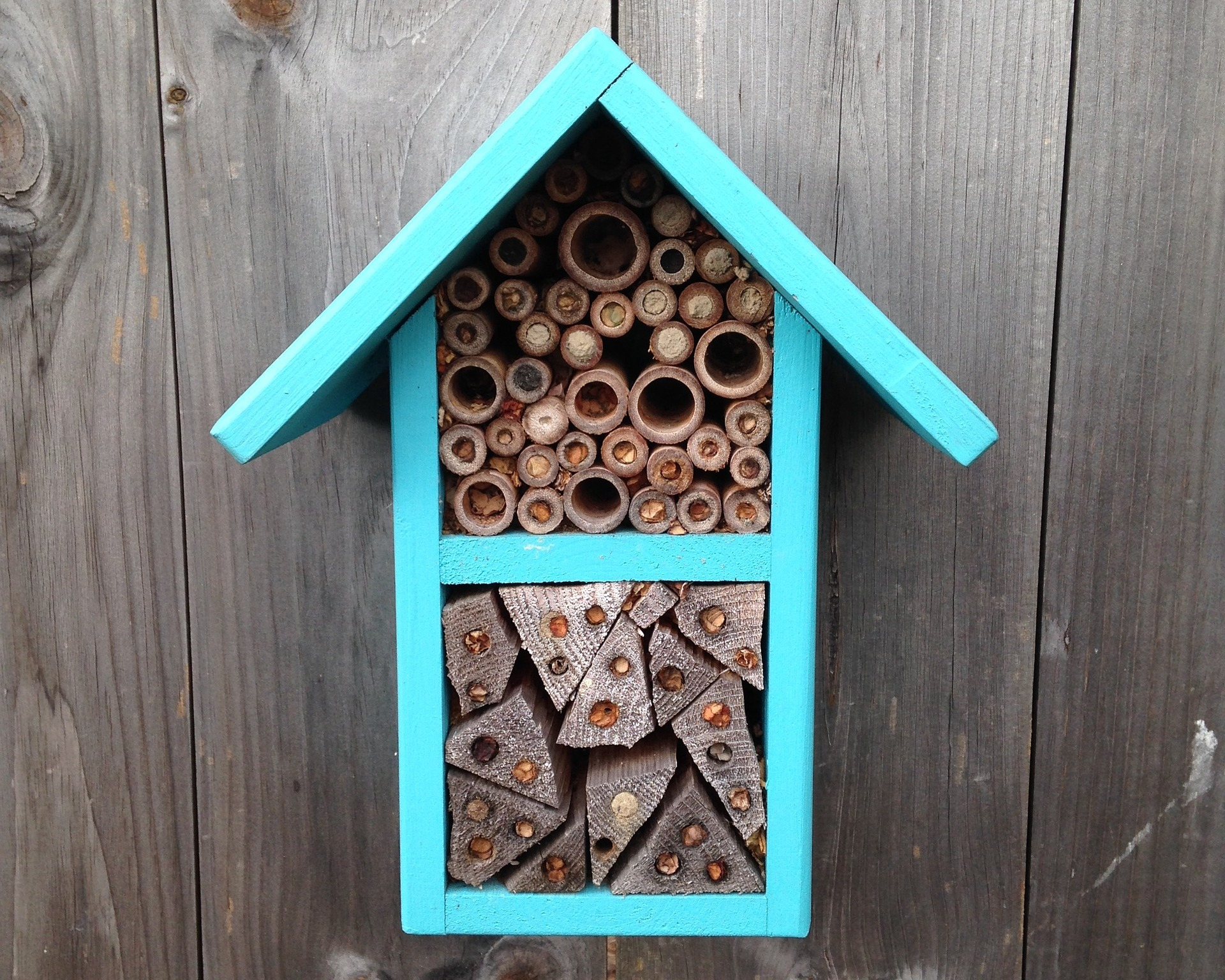 Bee Houses for Solitary Bees