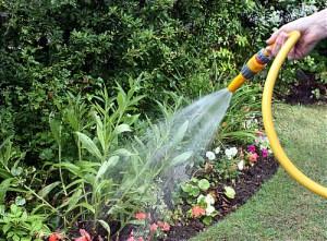 Le jardinage est la véritable essence de la vie. &quot;Class =&quot; size-medium wp-image-5206 &quot;data-recalc-dims =&quot; 1 &quot;/&gt;   <p class=