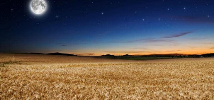Qu'est-ce que la Harvest Moon? | Harvest Moon Facts and Information