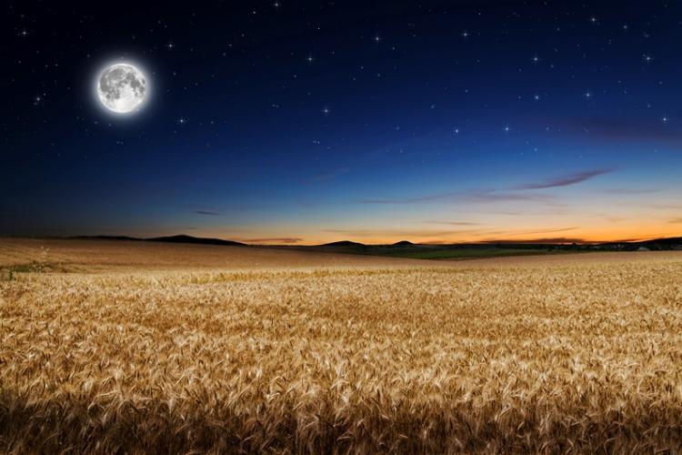 Qu'est-ce que la Harvest Moon?   Harvest Moon Facts and Information