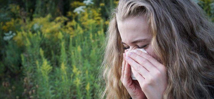 Allégement des allergies d'automne | Remèdes contre la fièvre du foin