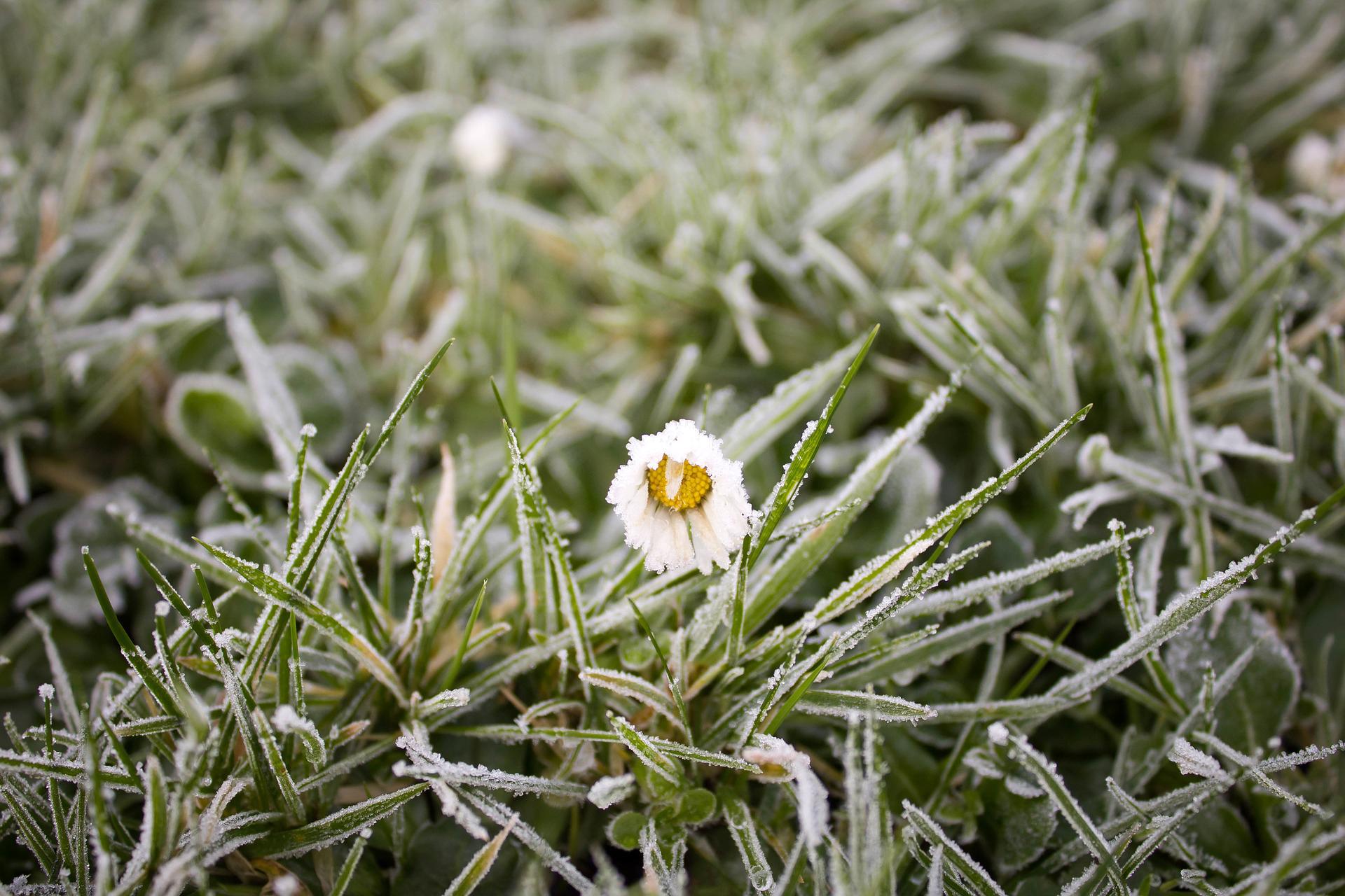 Perspectives d'hiver 2017-2018: plus froid que l'année dernière