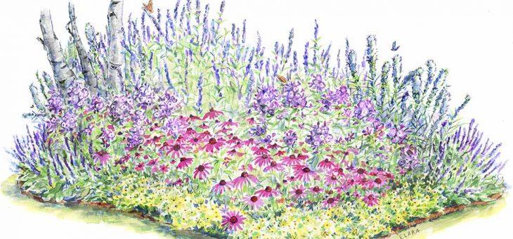 Les fleurs vivaces: comment cultiver et soigner les vivaces