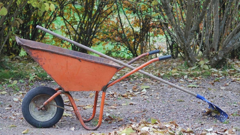 Préparation de votre jardin pour l'hiver