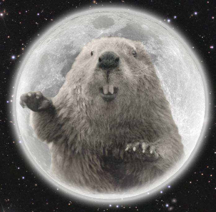 Pleine lune pour novembre 2017: La pleine lune de castor