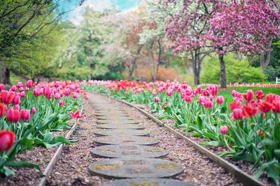 De simples astuces pour obtenir un jardin impressionnant