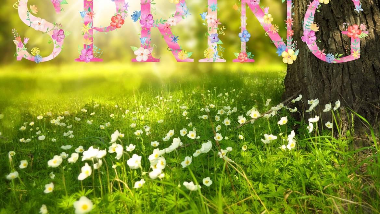 Premier jour du printemps 2019: Célébrez l'équinoxe du printemps