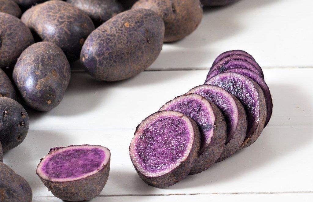 Toutes les pommes de terre bleues Heirloom Spring Seeds