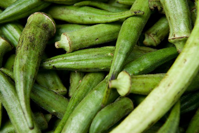 Okra: Planter, cultiver et récolter des plantes de gombo