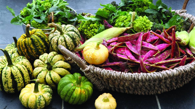 Oui, les plantes ont des protéines! Choisir des aliments protéinés sains