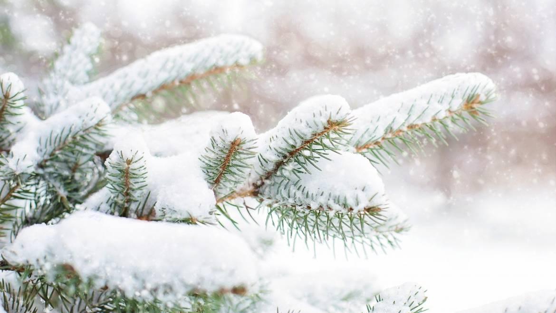 Vous rêvez d'un Noël blanc?   Prévisions météorologiques pour Noël 2019