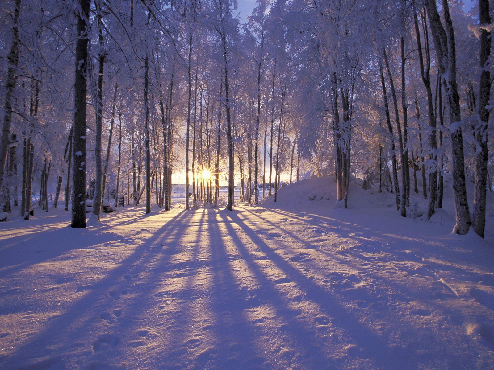 Solstice d'hiver 2019: le premier jour de l'hiver