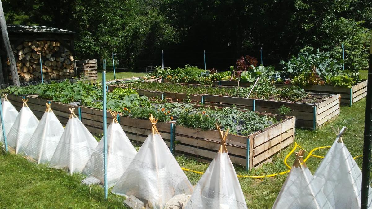 Avis de planificateur de jardin potager: Greg M.