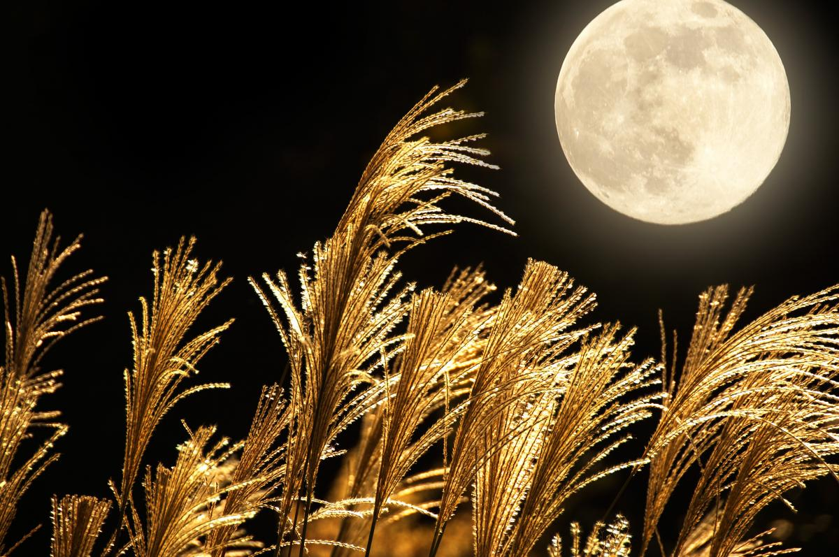 Quel jour est la lune de récolte en octobre?