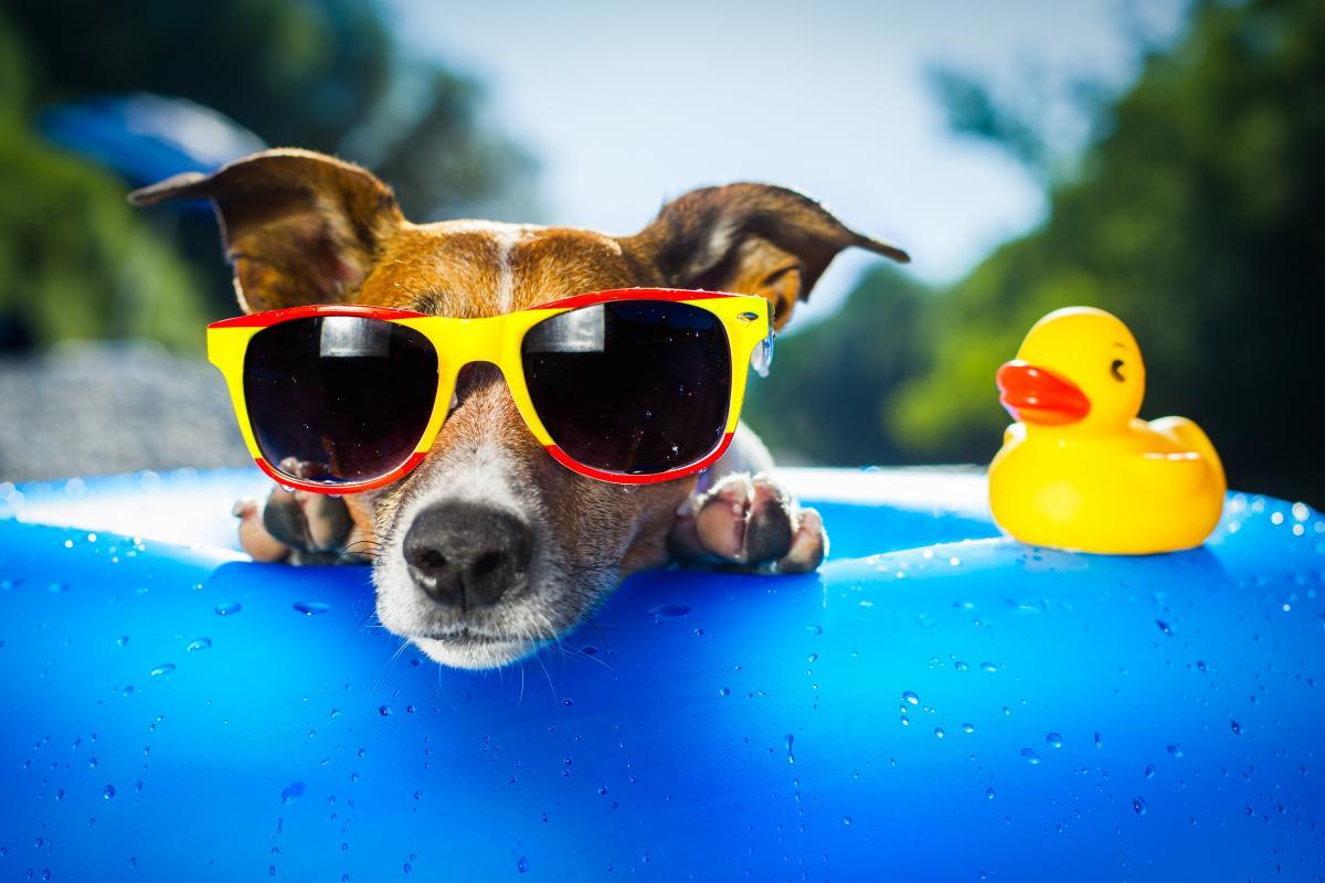 Prévisions météorologiques estivales 2020: un été torride à venir