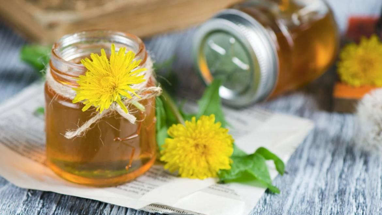 Recette de sirop de pissenlit (miel de pissenlit)