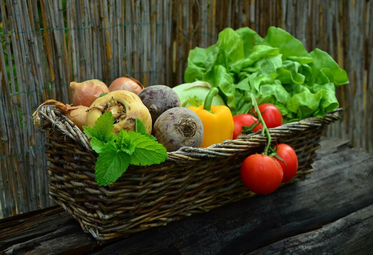 Quand récolter les fruits et légumes