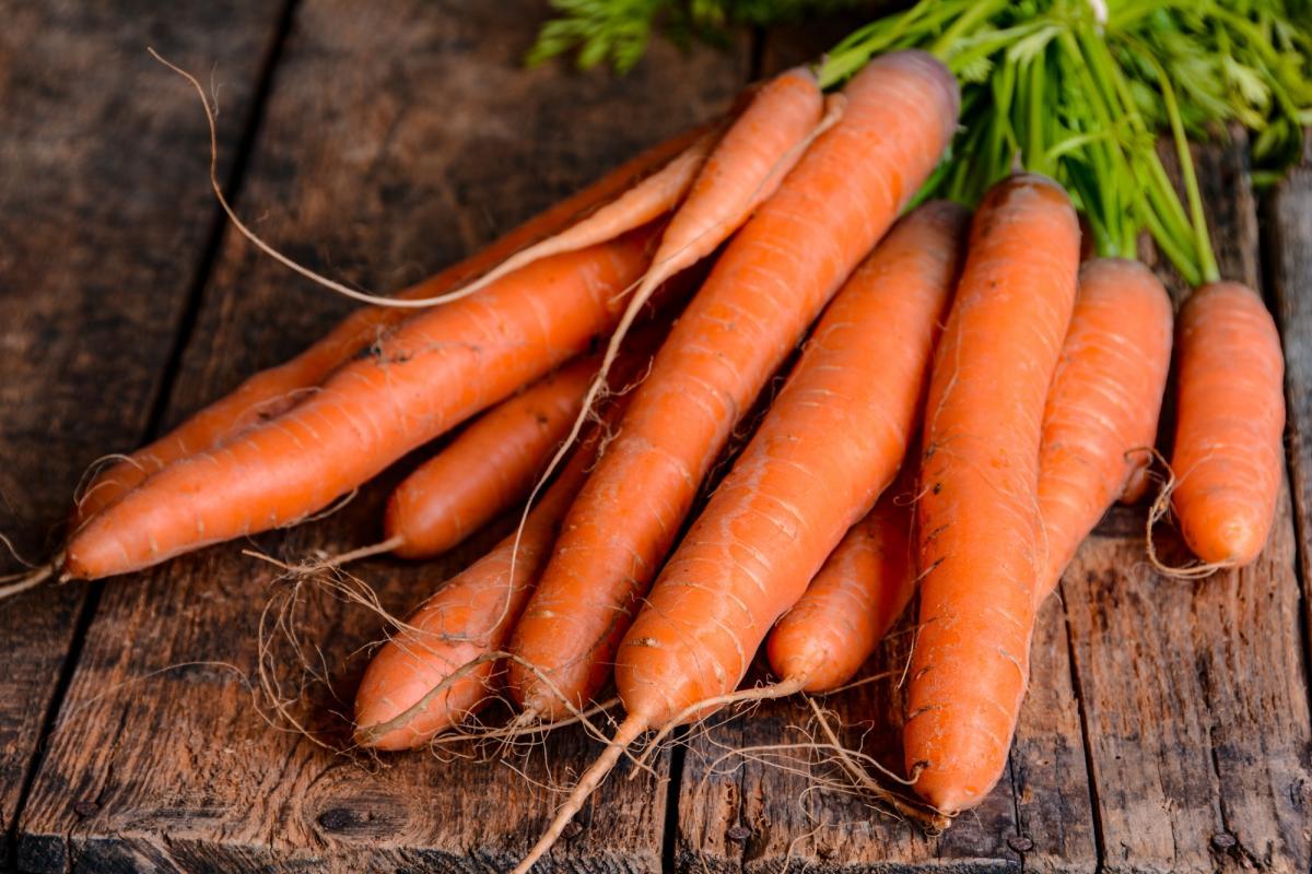 Carottes: planter, cultiver et récolter des carottes à la maison