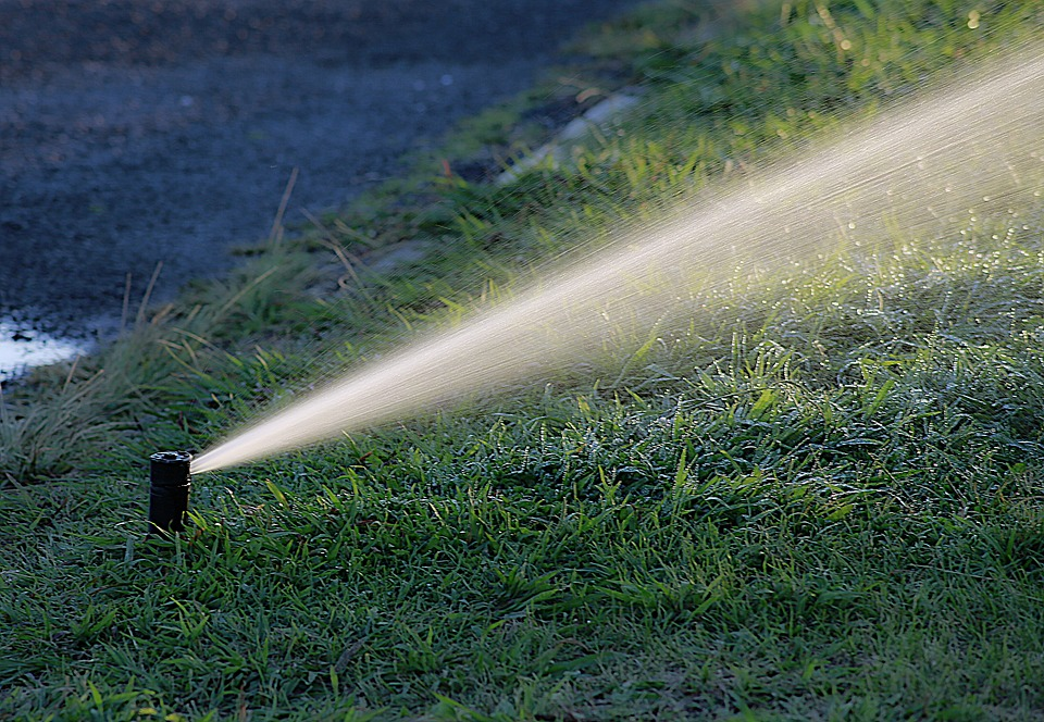 Jardinage: les astuces pour limiter la consommation d'eau