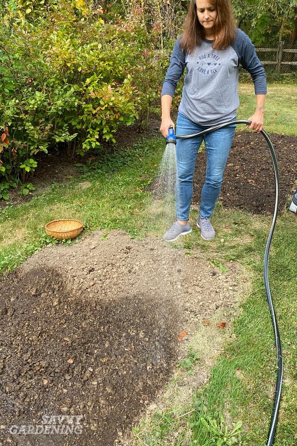 Planter des graines de gazon: instructions étape par étape