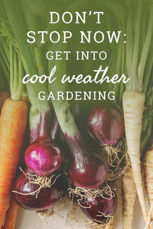 Ne vous arrêtez pas maintenant: entrez dans le jardinage par temps frais