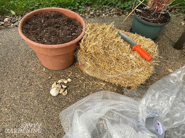 Ce dont vous aurez besoin pour faire pousser une récolte d'ail en pot