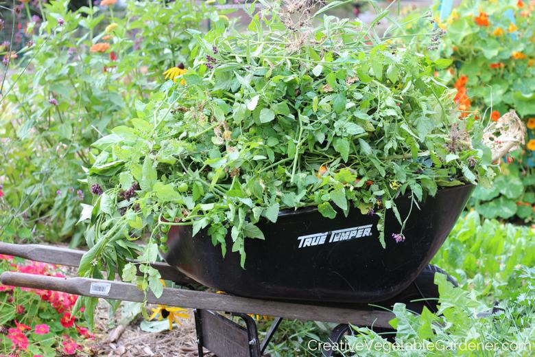 nettoyer les débris végétaux pour nettoyer votre jardin pour l'hiver