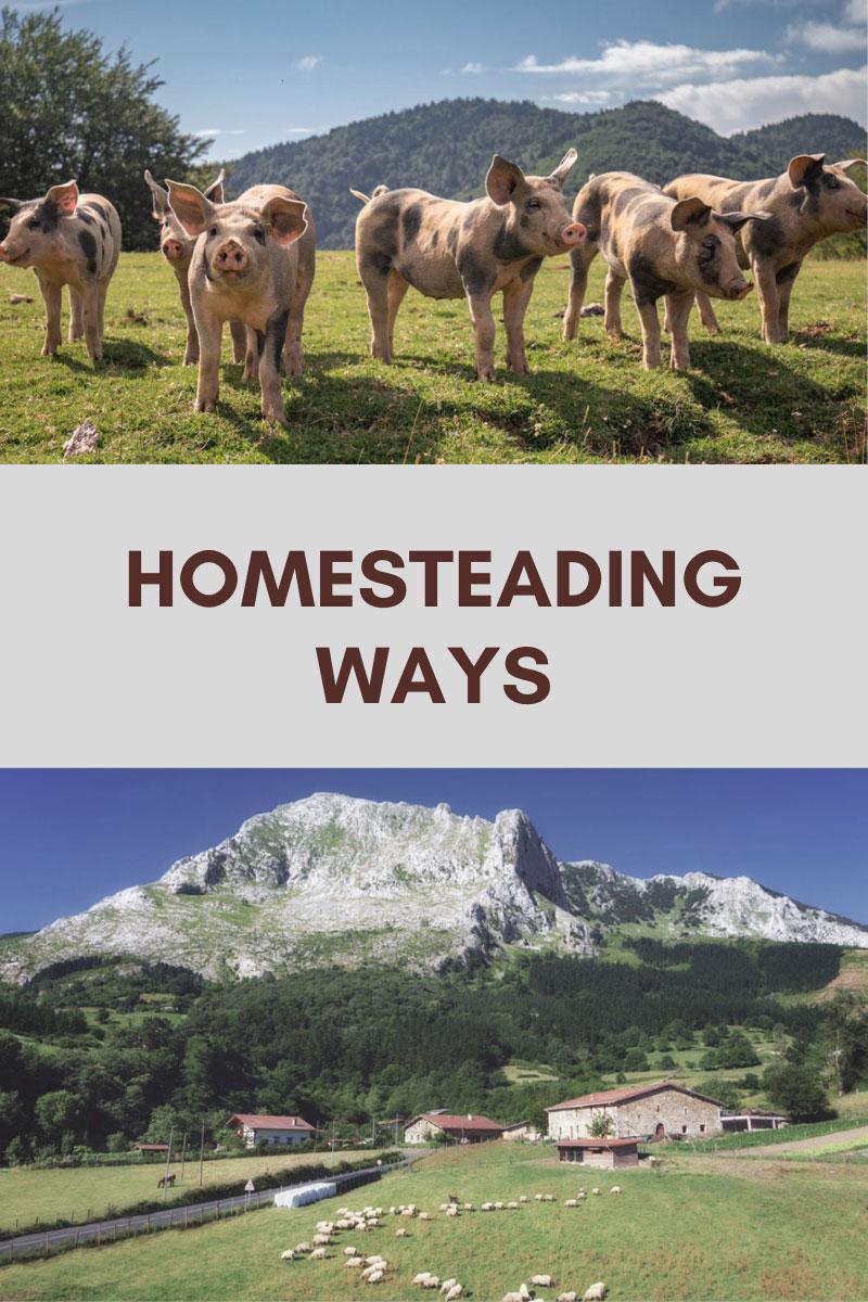 Un mode de vie différent – Vivre les joies d'une ferme familiale
