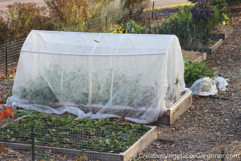 utilisez des couvertures pour préparer votre jardin pour l'hiver