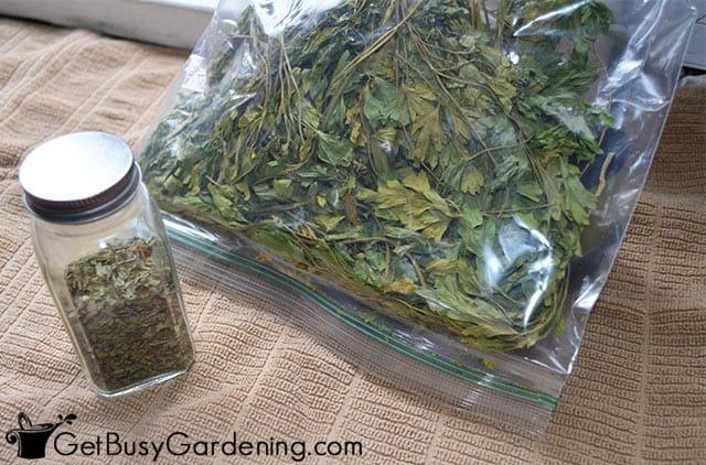 Conserver le persil séché dans un pot à épices et un sachet