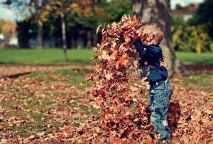 enfant jetant des feuilles