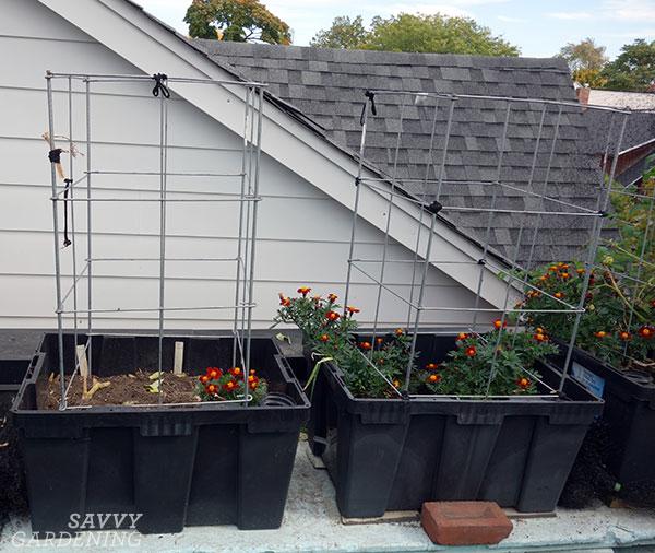 jardinières sous-irriguées sur le toit