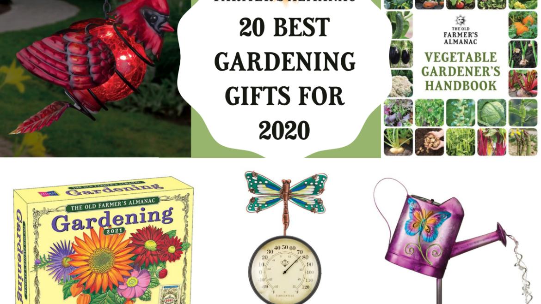 20 meilleurs cadeaux de jardinage pour 2020 |  Idées cadeaux pour les fêtes