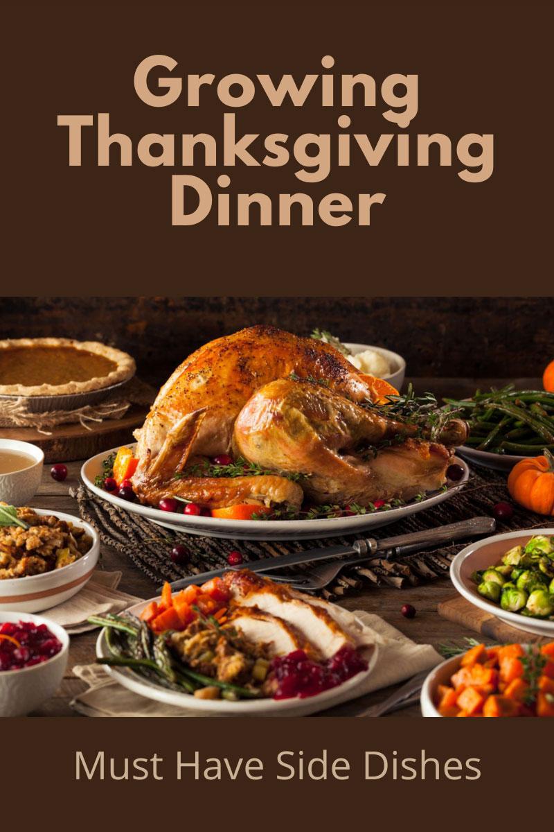 Plats de légumes de Thanksgiving du jardin