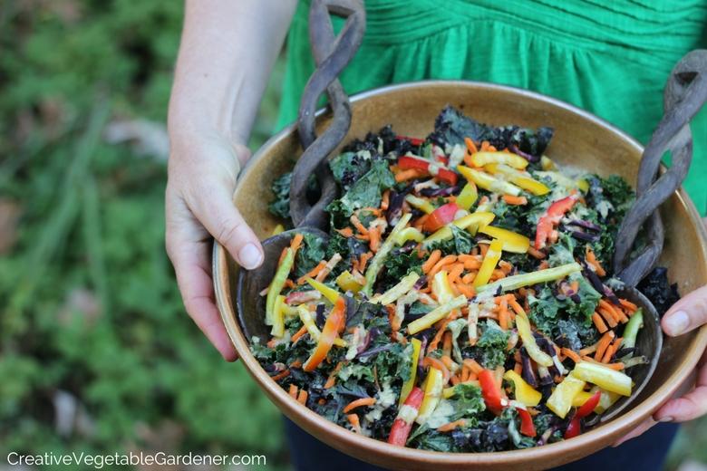 salade de chou frisé comme plat d'accompagnement de légumes sains