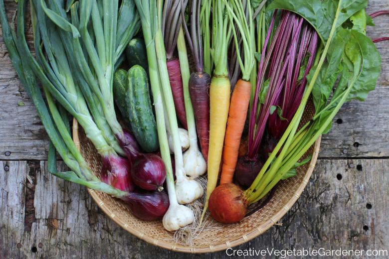 Jardinier créatif: 10 plats d'accompagnement végétariens sains directement du jardin d'automne