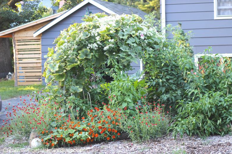 Jardinier créatif: 5 idées uniques pour rendre votre jardin plus beau