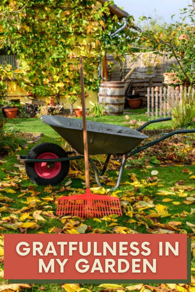 Que signifie gratitude dans le jardin