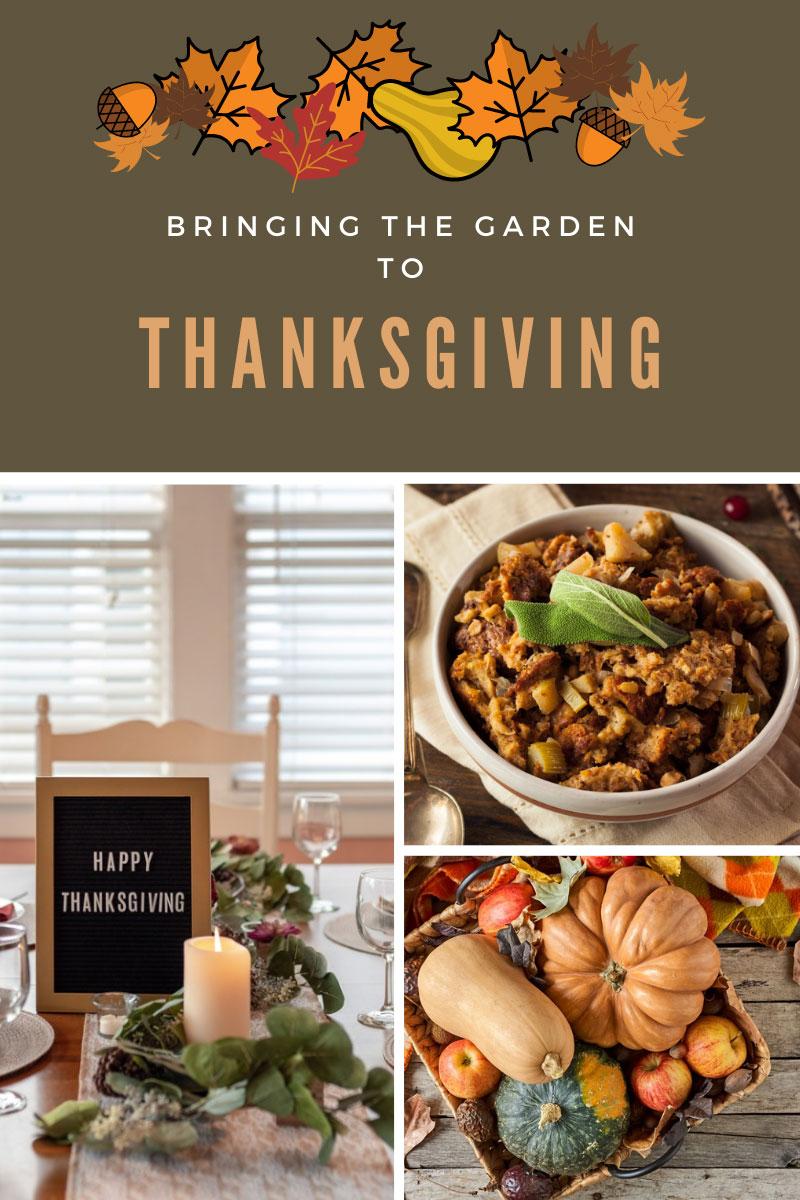 Légumes et herbes pour Thanksgiving – Utilisation de produits du jardin
