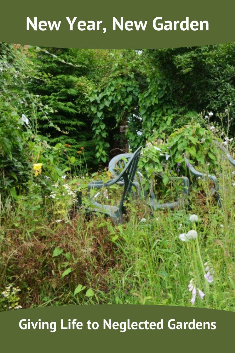La nouvelle année apporte un nouvel espoir – Revitaliser un jardin négligé
