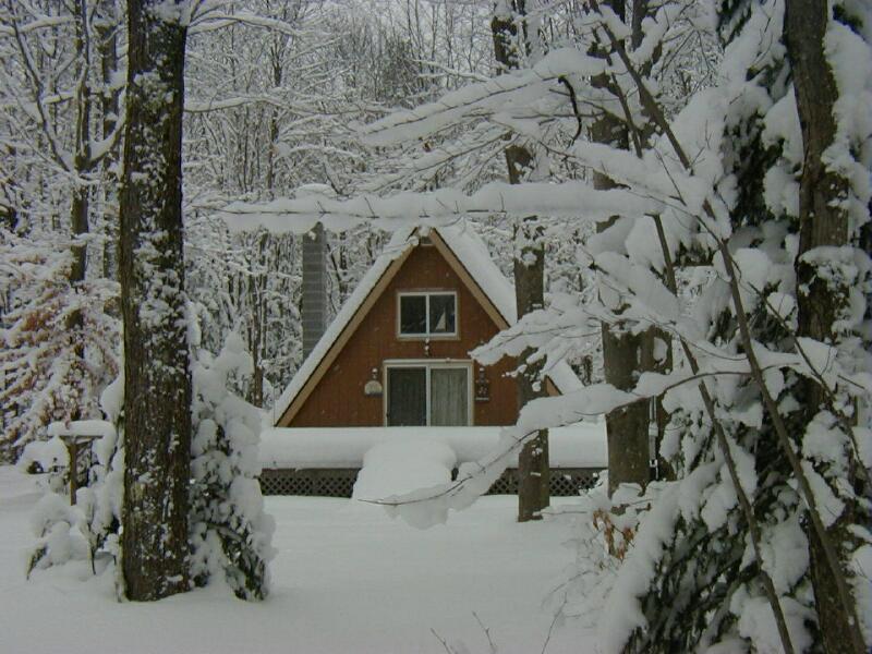 Utilisations ménagères pour la neige et la glace en hiver