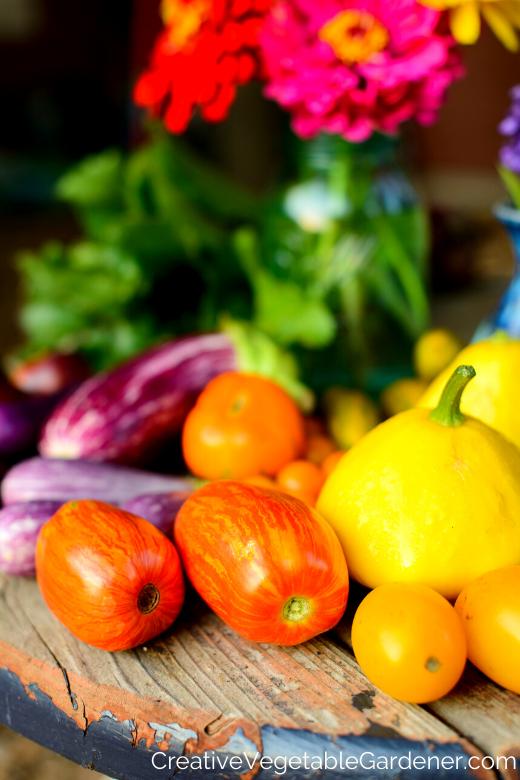 récolte de légumes choisir ce qu'il faut cultiver