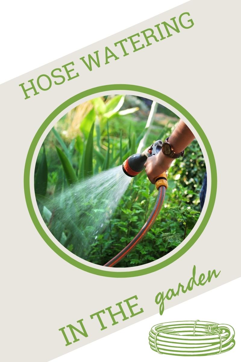 Tuyau d'arrosage pour l'arrosage – Conseils pour l'arrosage des plantes avec un tuyau