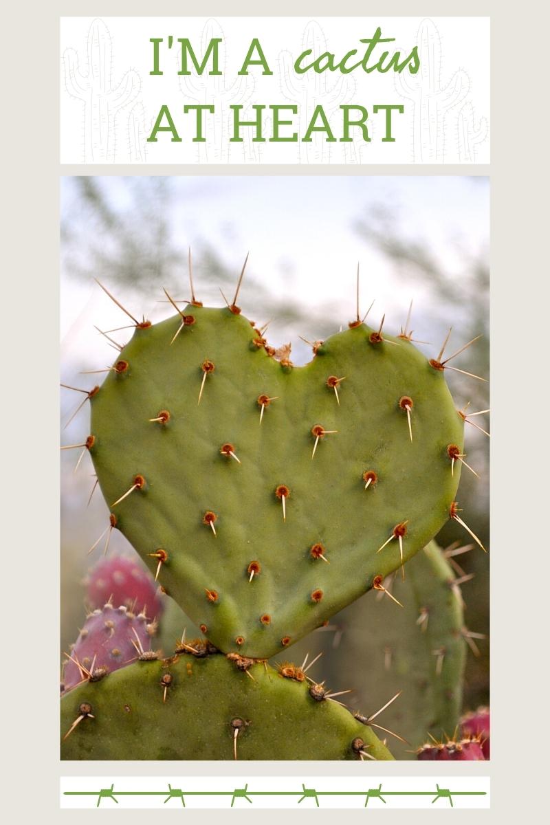 Si je pouvais être une succulente, je serais un cactus
