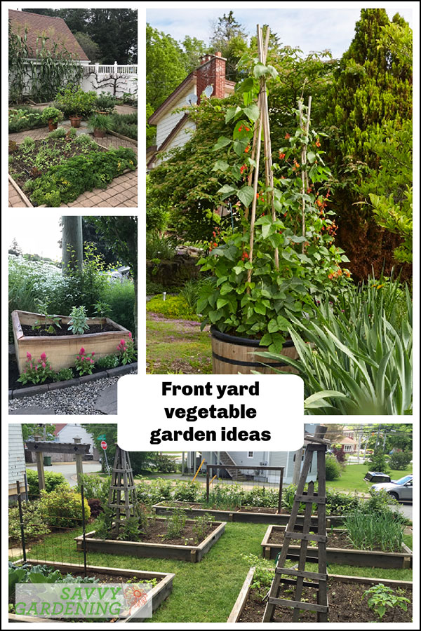 idées pour votre jardin potager avant