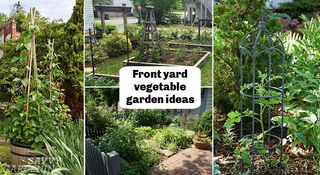 Cultivez un mélange de nourriture et de fleurs