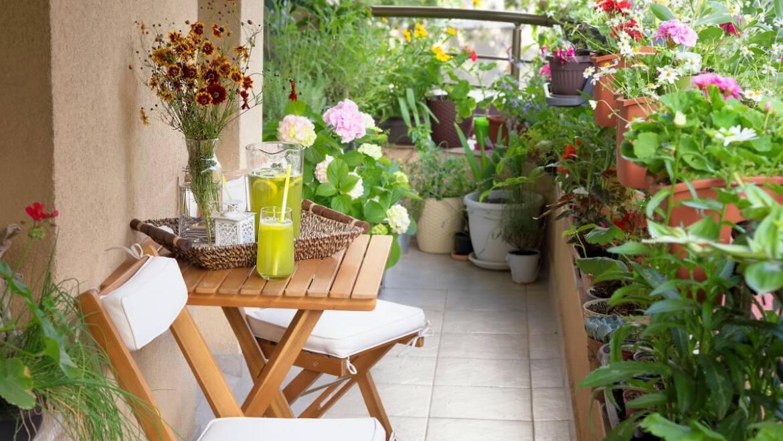 10 conseils pour démarrer un jardin avec balcon